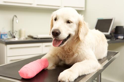 Bandage aftercare